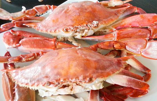 太鮮甜!生猛大螃蟹頂級享受