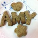 amylin 圖像