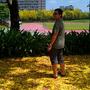 bryanhuang305