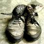 catlove116219