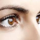 Glaucoma2014 圖像