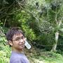 justinyes 『茶香螢光』森林中的小王子
