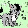 普通貓戰士迷
