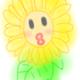 創作者 -coffeefly- 的頭像