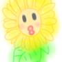 -coffeefly-