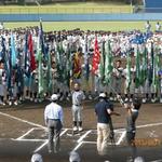 新社棒球聯盟