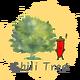 創作者 Chili Tree 的頭像